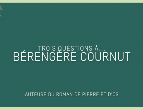 3 questions à… Bérengère Cournut